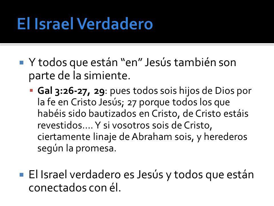 Y todos que están en Jesús también son parte de la simiente. Gal 3:26-27, 29: pues todos sois hijos de Dios por la fe en Cristo Jesús; 27 porque todos