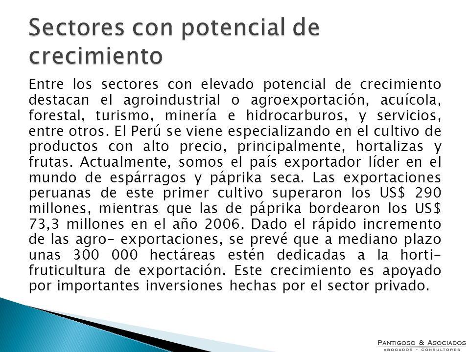 Entre los sectores con elevado potencial de crecimiento destacan el agroindustrial o agroexportación, acuícola, forestal, turismo, minería e hidrocarb