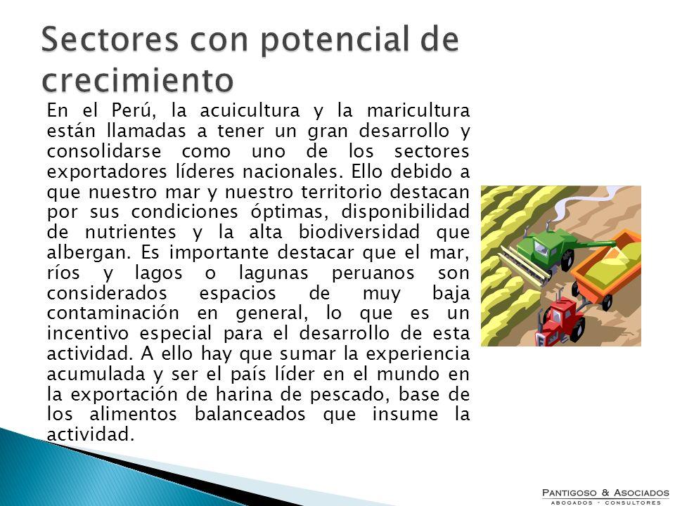 En el Perú, la acuicultura y la maricultura están llamadas a tener un gran desarrollo y consolidarse como uno de los sectores exportadores líderes nac