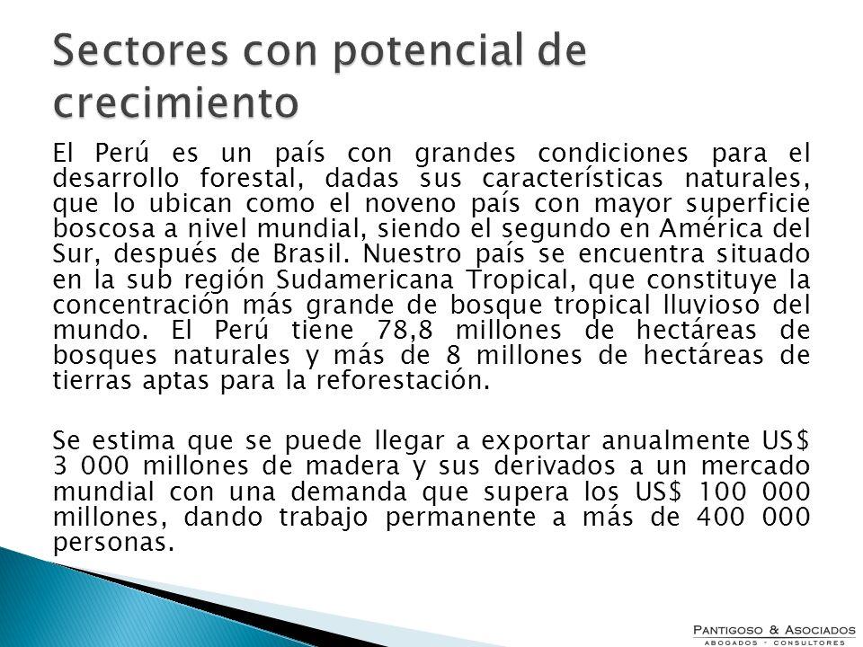 El Perú es un país con grandes condiciones para el desarrollo forestal, dadas sus características naturales, que lo ubican como el noveno país con may