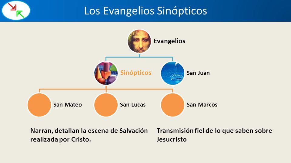 Evangelios Sinópticos San MateoSan LucasSan Marcos San Juan Los Evangelios Sinópticos Narran, detallan la escena de Salvación realizada por Cristo. Tr
