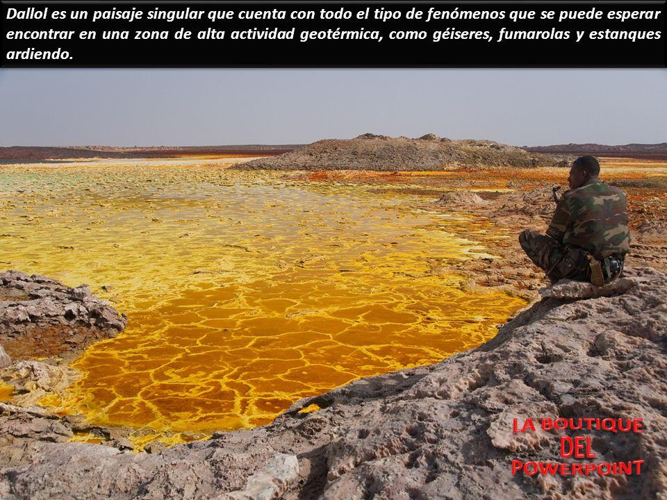 Si los canales subterráneos que riegan el suelo se bloquean debido a movimientos sísmicos o por otras causas naturales, la tierra se seca y se vuelve