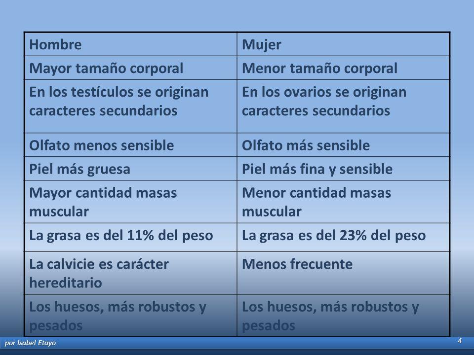 HombreMujer Mayor tamaño corporalMenor tamaño corporal En los testículos se originan caracteres secundarios En los ovarios se originan caracteres secu