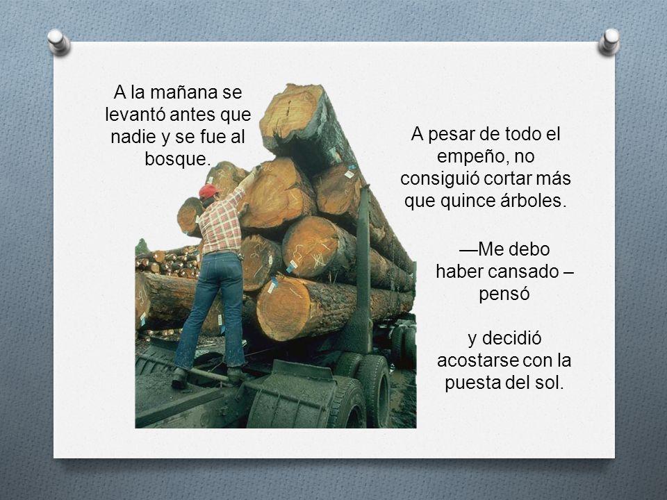 A pesar de todo el empeño, no consiguió cortar más que quince árboles.