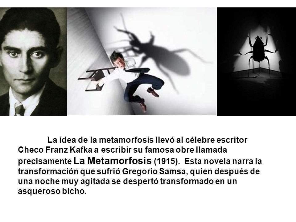 La idea de la metamorfosis llevó al célebre escritor Checo Franz Kafka a escribir su famosa obre llamada precisamente La Metamorfosis (1915). Esta nov