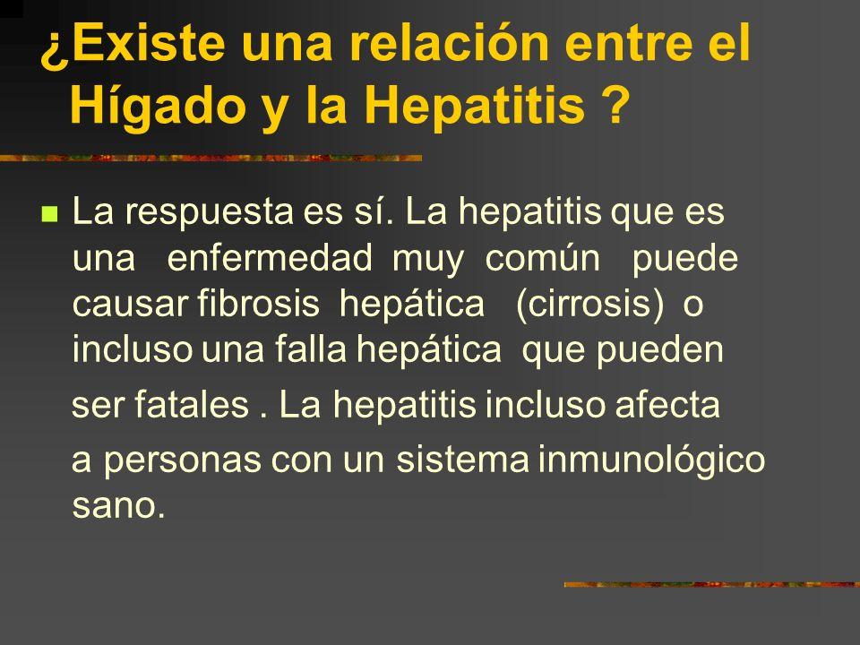 Coinfección VIH/ Hepatitis HVC ¿Cuál es la importancia del Hígado? Este órgano desempeña muchas funciones para mantenernos vivos. El hígado combate la
