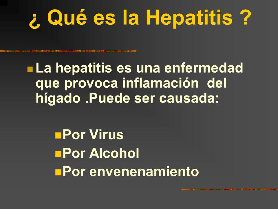 ¿Existe una relación entre el Hígado y la Hepatitis ? La respuesta es sí. La hepatitis que es una enfermedad muy común puede causar fibrosis hepática