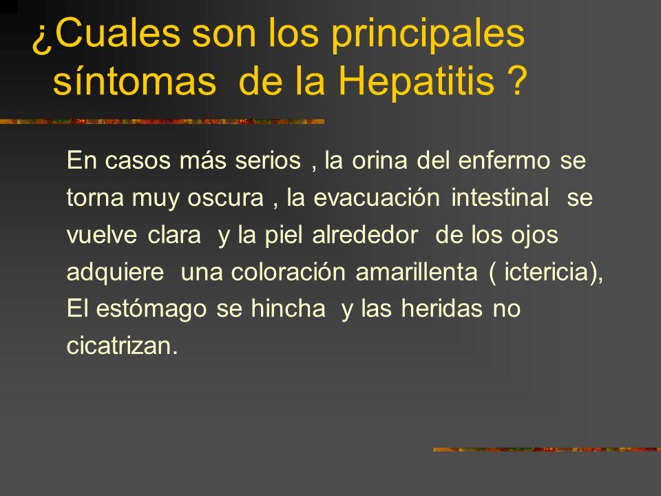¿Cuales son los principales síntomas de la Hepatitis ? La hepatitis es una enfermedad que en muchos casos no es tratada debido a que no presenta ningú
