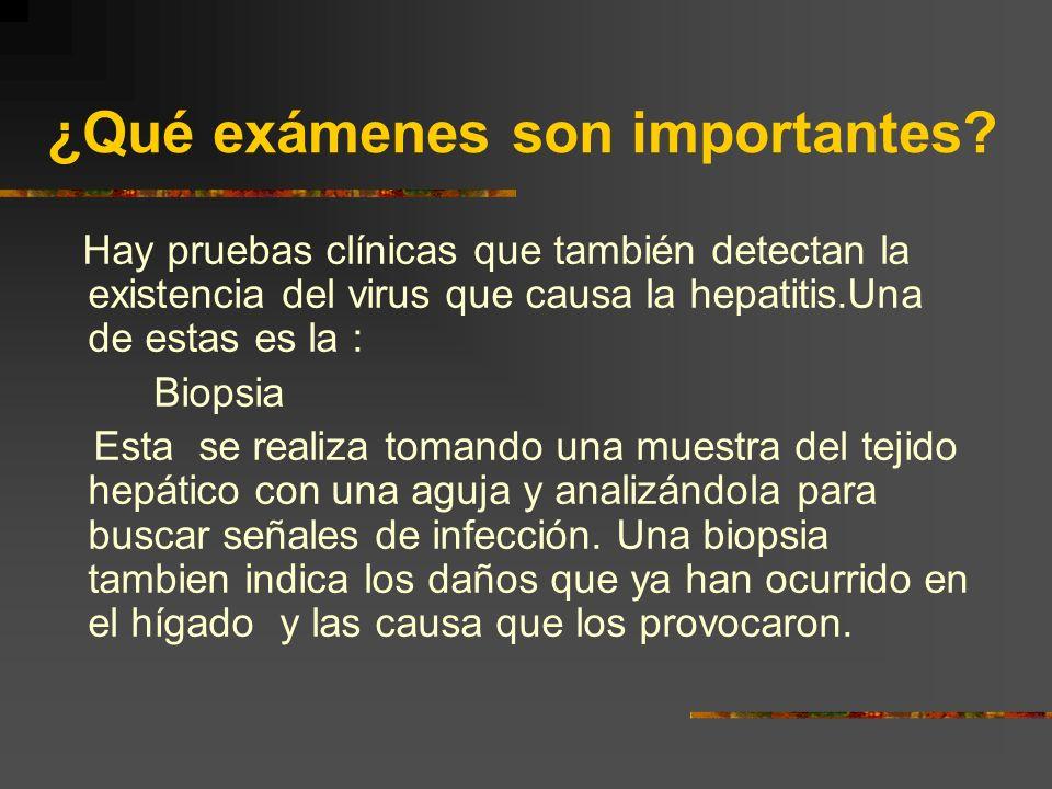 ¿Qué exámenes son importantes? Un análisis de sangre para verificar si el hígado esta trabajando correcta- mente.Esta prueba clínica analizará varias