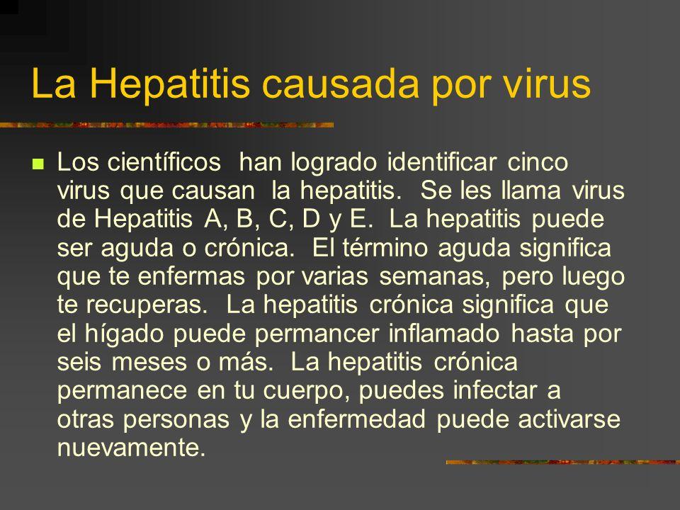 ¿Qué exámenes son importantes? Hay pruebas clínicas que también detectan la existencia del virus que causa la hepatitis.Una de estas es la : Biopsia E
