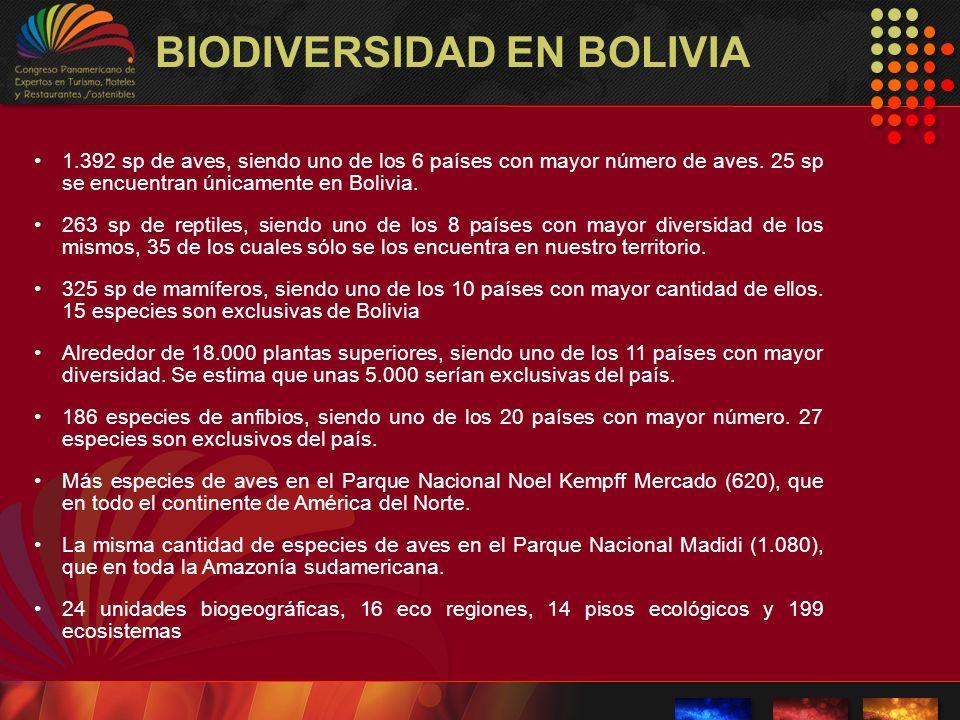 BIODIVERSIDAD EN BOLIVIA 1.392 sp de aves, siendo uno de los 6 países con mayor número de aves. 25 sp se encuentran únicamente en Bolivia. 263 sp de r
