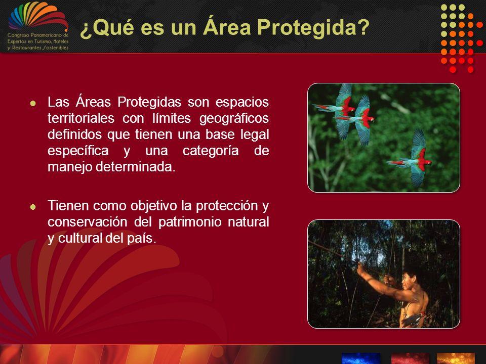 ¿Qué es un Área Protegida? Las Áreas Protegidas son espacios territoriales con límites geográficos definidos que tienen una base legal específica y un