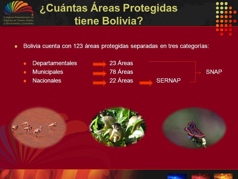 ¿Cuántas Áreas Protegidas tiene Bolivia? Bolivia cuenta con 123 áreas protegidas separadas en tres categorías: Departamentales23 Áreas Municipales78 Á