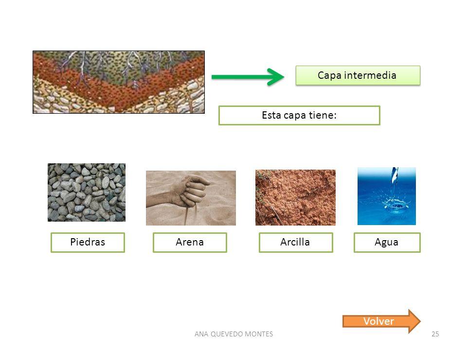 ANA QUEVEDO MONTES25 Capa intermedia Esta capa tiene: PiedrasArenaArcillaAgua Volver