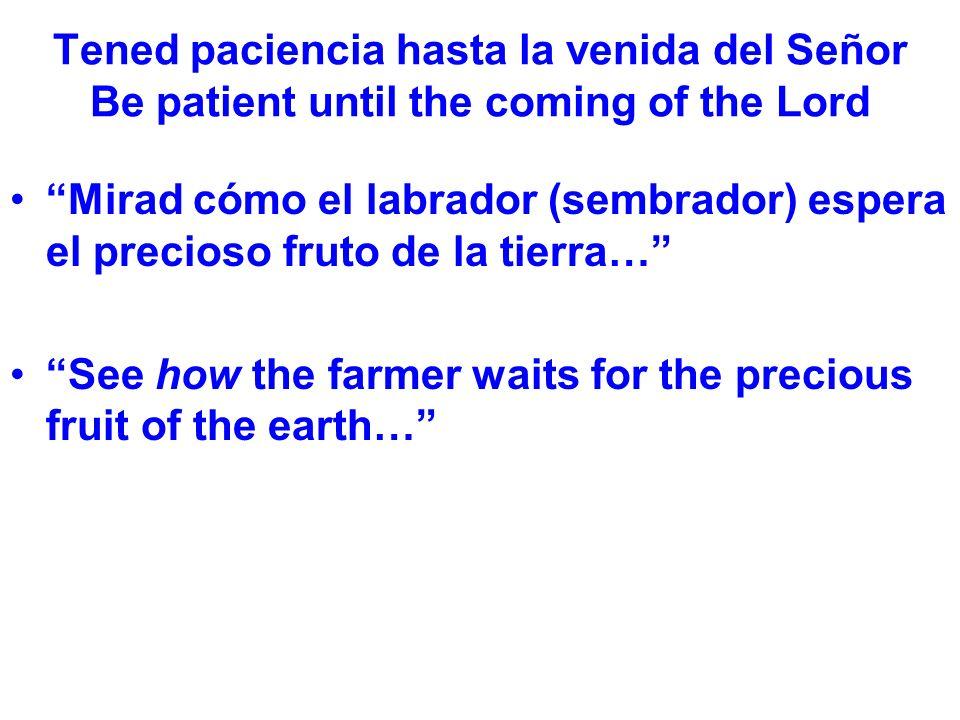 Tened paciencia hasta la venida del Señor Be patient until the coming of the Lord Mirad cómo el labrador (sembrador) espera el precioso fruto de la tierra… See how the farmer waits for the precious fruit of the earth…