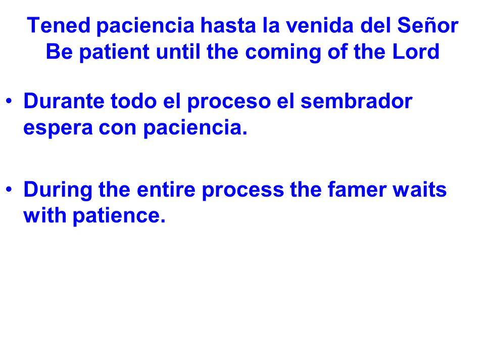 Tened paciencia hasta la venida del Señor Be patient until the coming of the Lord Durante todo el proceso el sembrador espera con paciencia.