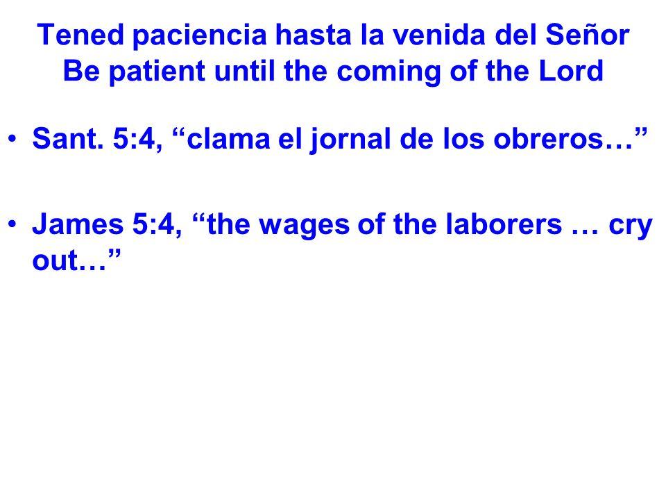 Tened paciencia hasta la venida del Señor Be patient until the coming of the Lord No sufrieron por asuntos personales, sino porque eran portavoces de Dios.