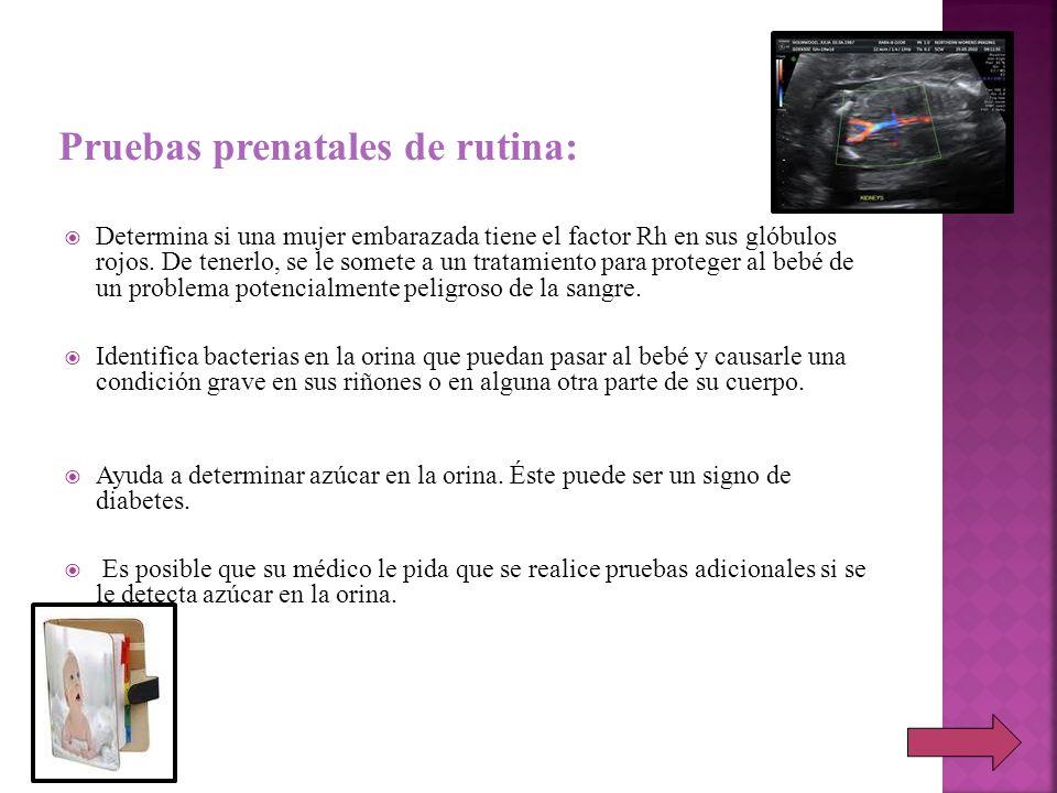 Determina si una mujer embarazada tiene el factor Rh en sus glóbulos rojos. De tenerlo, se le somete a un tratamiento para proteger al bebé de un prob