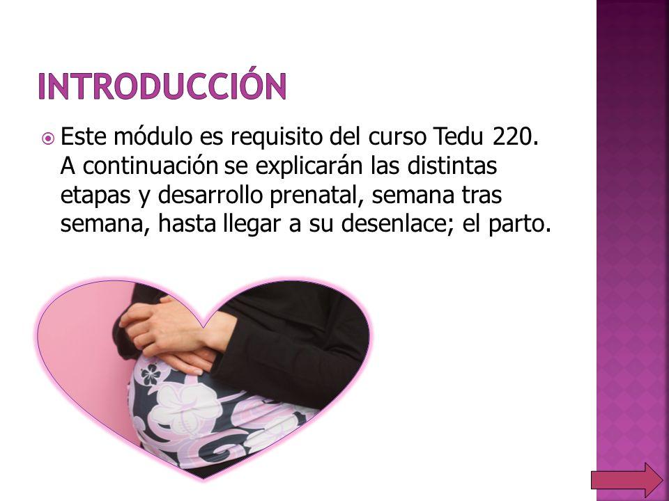 Este módulo es requisito del curso Tedu 220. A continuación se explicarán las distintas etapas y desarrollo prenatal, semana tras semana, hasta llegar