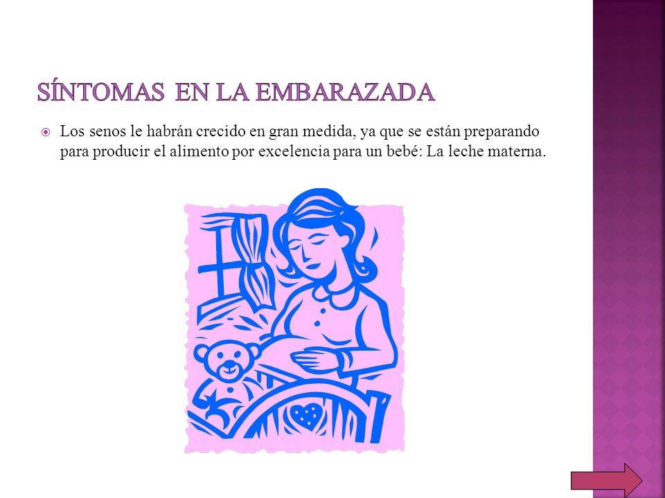 Los senos le habrán crecido en gran medida, ya que se están preparando para producir el alimento por excelencia para un bebé: La leche materna.