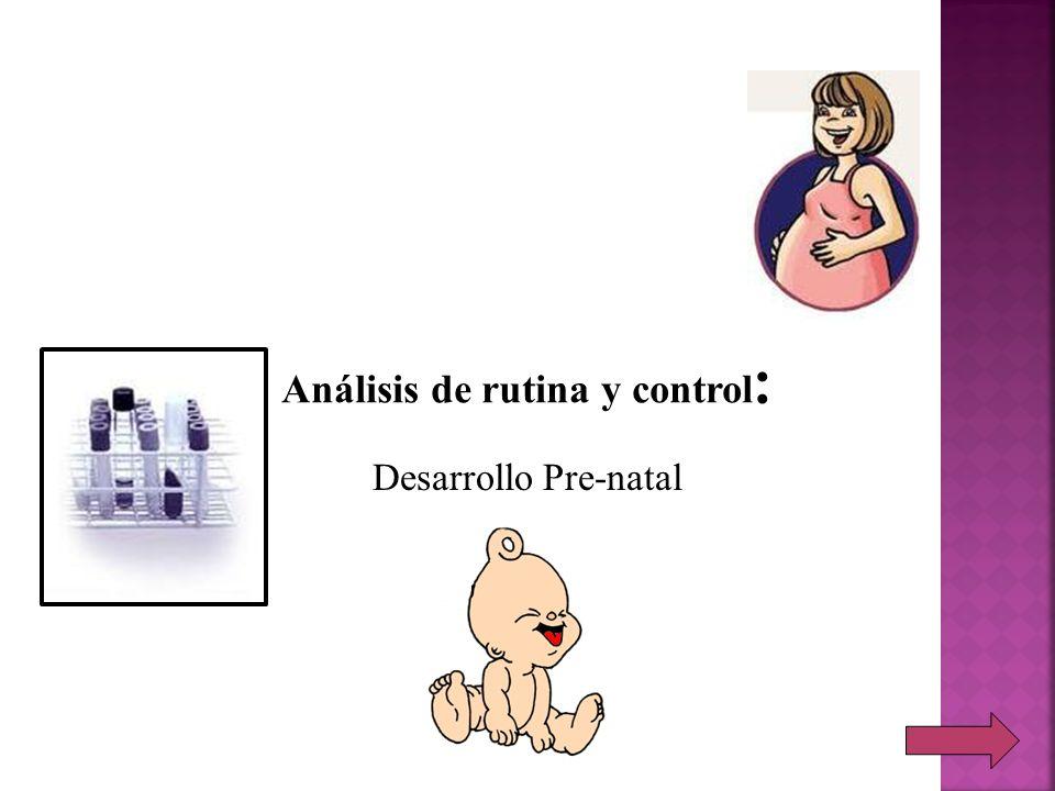 Desarrollo Pre-natal