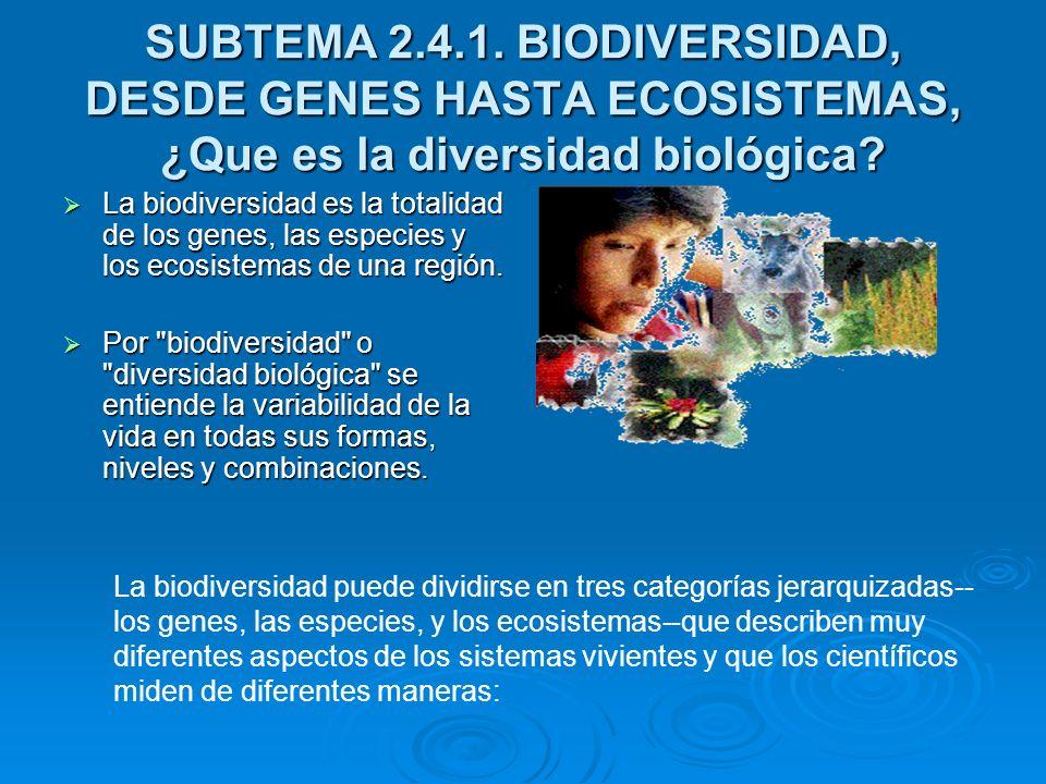 SUBTEMA 2.4.1. BIODIVERSIDAD, DESDE GENES HASTA ECOSISTEMAS, ¿Que es la diversidad biológica? La biodiversidad es la totalidad de los genes, las espec