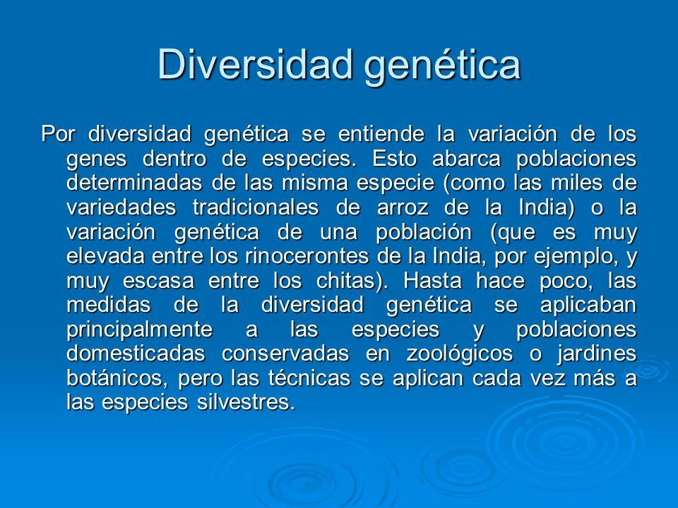 Diversidad genética Por diversidad genética se entiende la variación de los genes dentro de especies. Esto abarca poblaciones determinadas de las mism