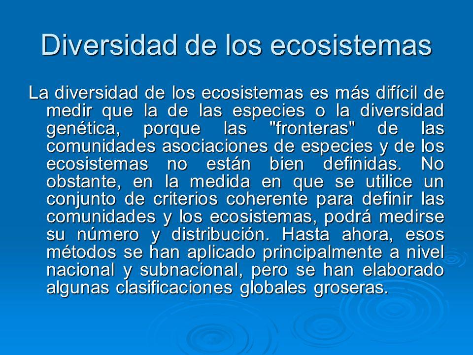 Diversidad de los ecosistemas La diversidad de los ecosistemas es más difícil de medir que la de las especies o la diversidad genética, porque las