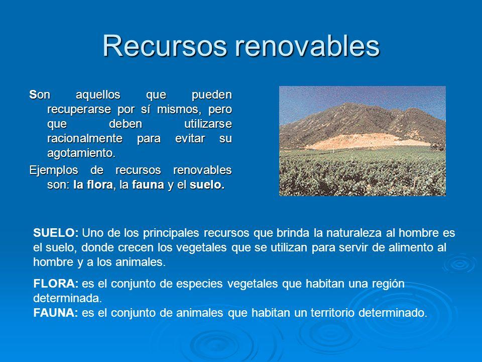 Recursos renovables Son aquellos que pueden recuperarse por sí mismos, pero que deben utilizarse racionalmente para evitar su agotamiento. Ejemplos de