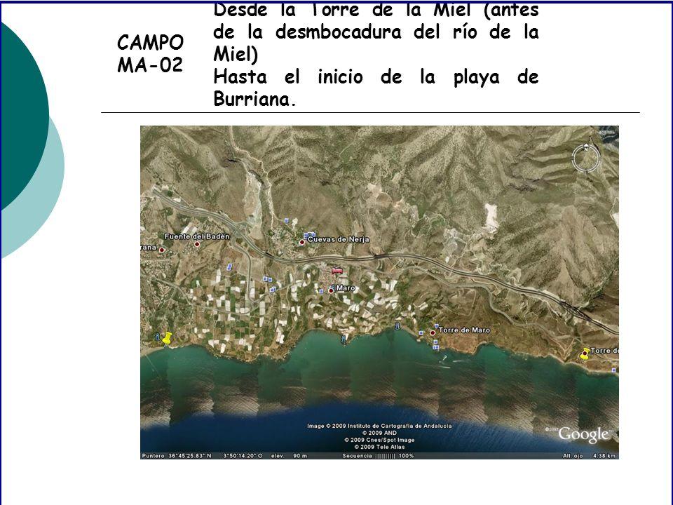 CAMPO MA-02 Desde la Torre de la Miel (antes de la desmbocadura del río de la Miel) Hasta el inicio de la playa de Burriana.