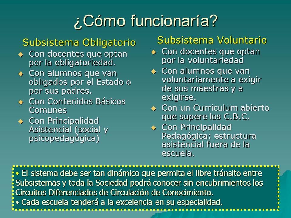 Ventajas Subsistema Obligatorio Profesionales Docentes especializados en atender la problemática elegida con formación psicopedagógica y social.