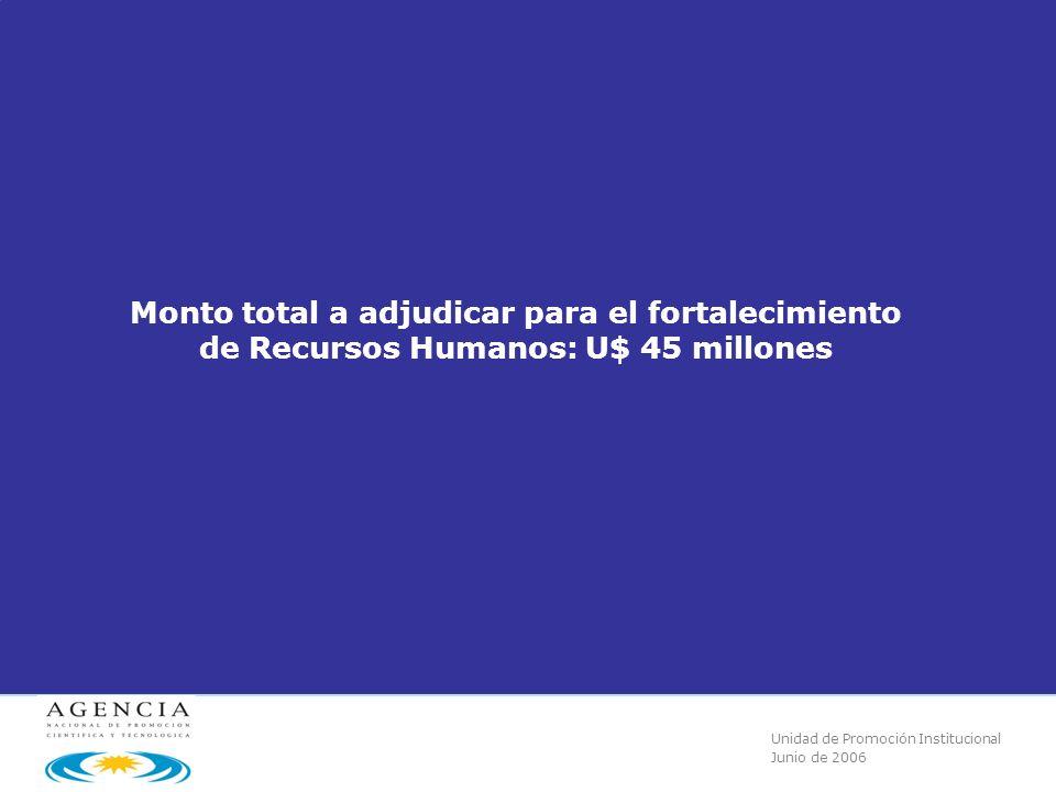 Unidad de Promoción Institucional Junio de 2006 Monto total a adjudicar para el fortalecimiento de Recursos Humanos: U$ 45 millones