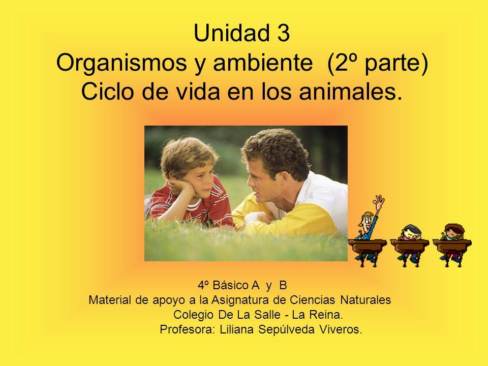 Unidad 3 Organismos y ambiente (2º parte) Ciclo de vida en los animales.