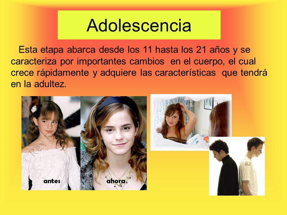 Adolescencia Esta etapa abarca desde los 11 hasta los 21 años y se caracteriza por importantes cambios en el cuerpo, el cual crece rápidamente y adquiere las características que tendrá en la adultez.