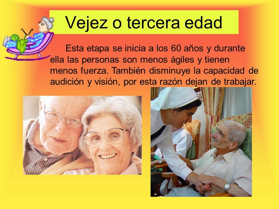 Vejez o tercera edad Esta etapa se inicia a los 60 años y durante ella las personas son menos ágiles y tienen menos fuerza.