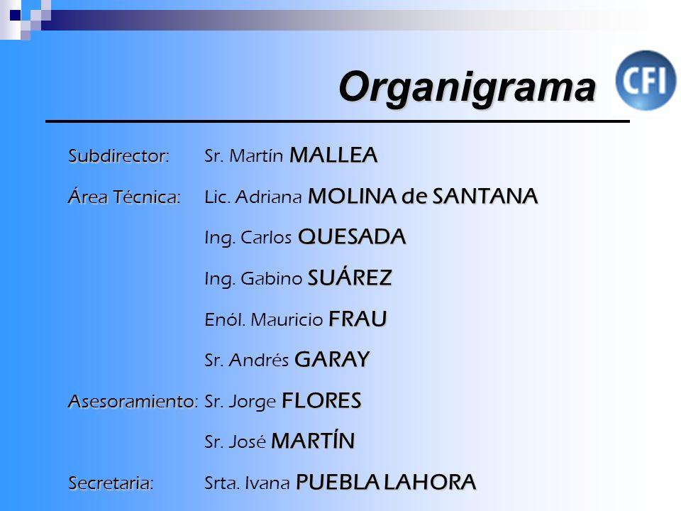Organigrama Subdirector MALLEA Subdirector: Sr.