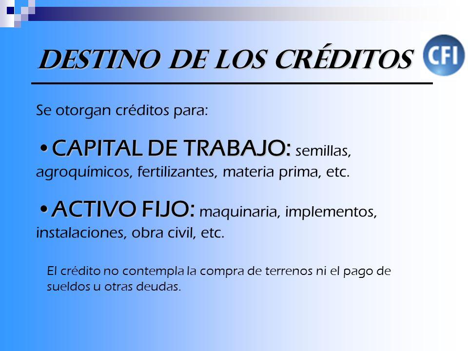 Se otorgan créditos para: CAPITAL DE TRABAJO:CAPITAL DE TRABAJO: semillas, agroquímicos, fertilizantes, materia prima, etc.