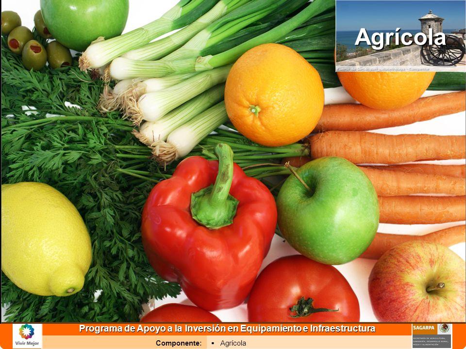 Programa de Apoyo a la Inversión en Equipamiento e Infraestructura Componente: AgrícolaAgrícola