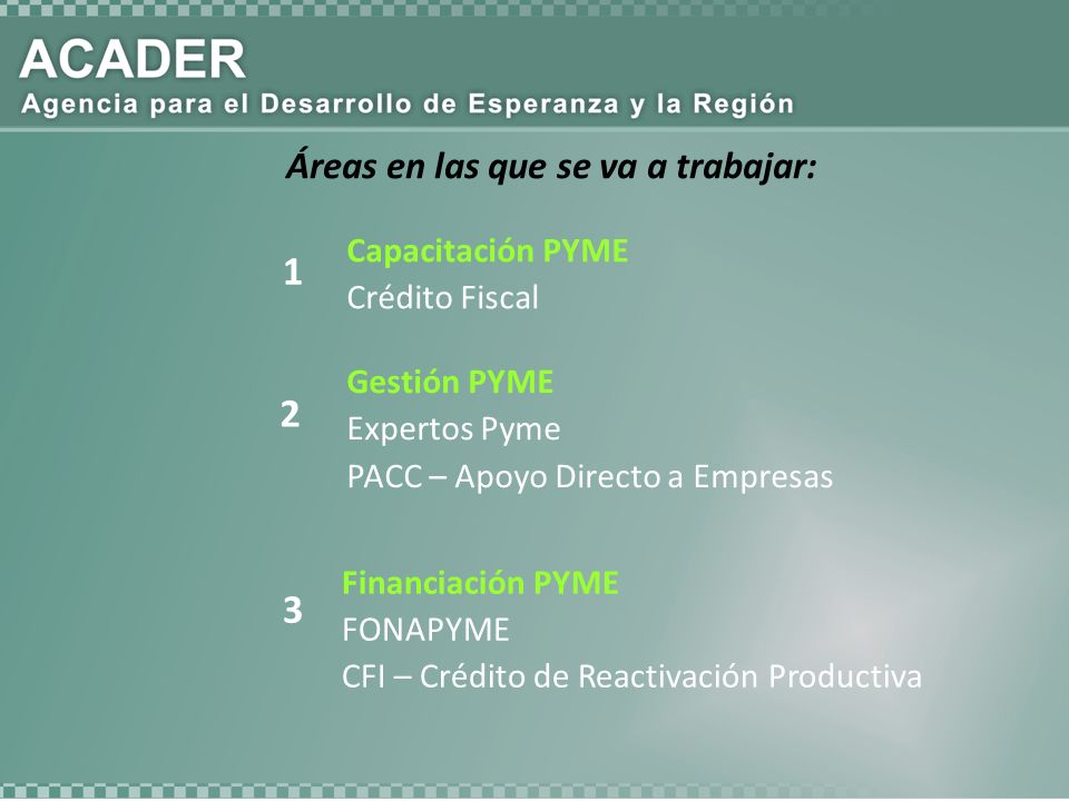 Áreas en las que se va a trabajar: Capacitación PYME Crédito Fiscal 1 2 Gestión PYME Expertos Pyme PACC – Apoyo Directo a Empresas 3 Financiación PYME FONAPYME CFI – Crédito de Reactivación Productiva