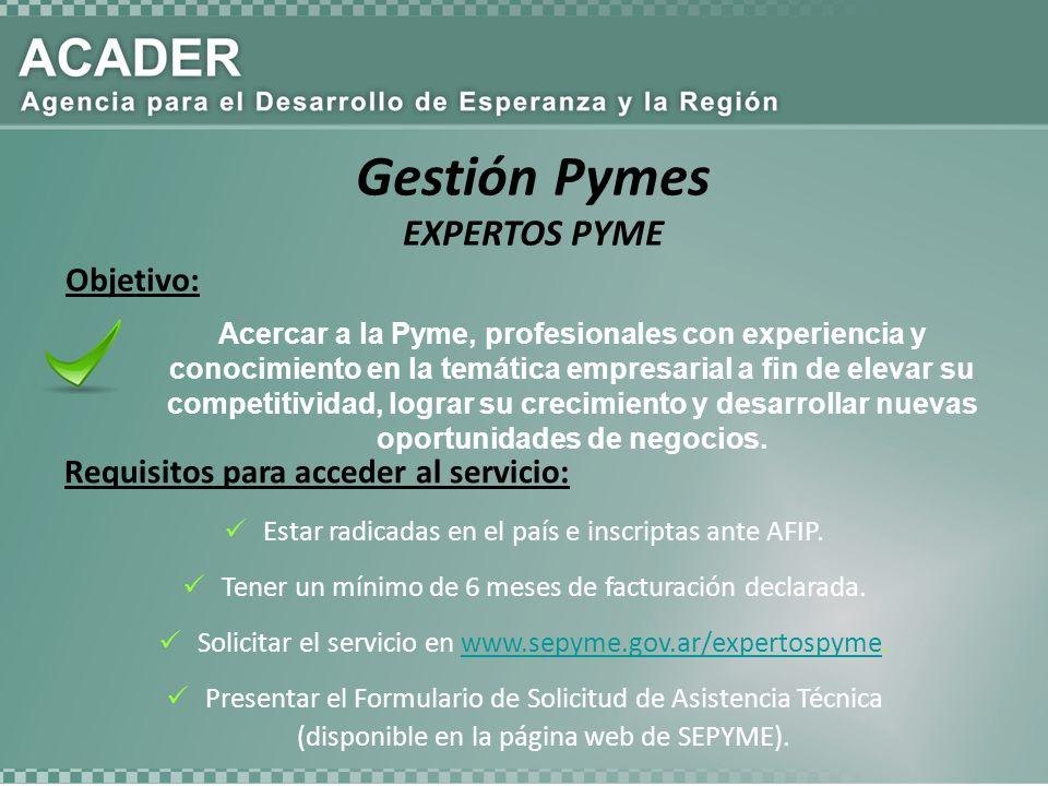 Acercar a la Pyme, profesionales con experiencia y conocimiento en la temática empresarial a fin de elevar su competitividad, lograr su crecimiento y desarrollar nuevas oportunidades de negocios.