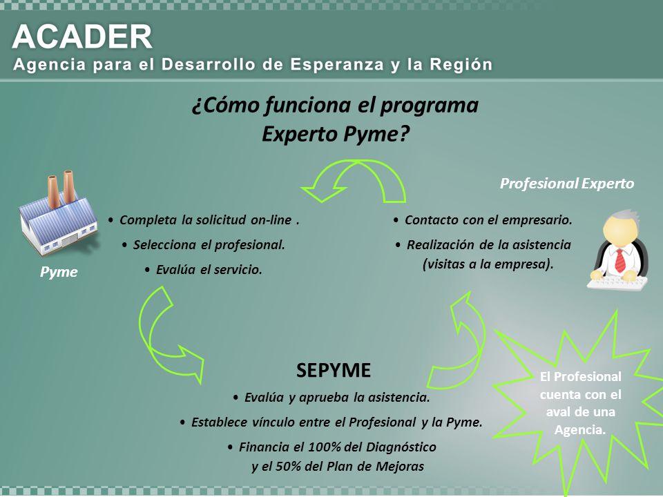 Completa la solicitud on-line. Selecciona el profesional. Evalúa el servicio. Pyme Profesional Experto ¿Cómo funciona el programa Experto Pyme? Evalúa