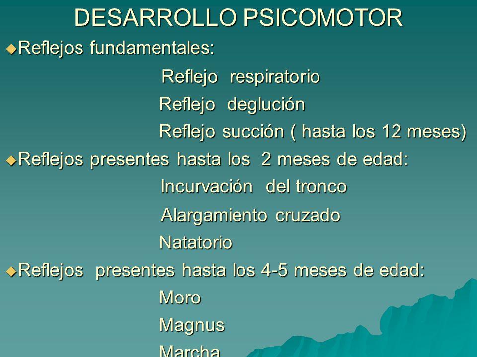 DESARROLLO PSICOMOTOR Reflejos fundamentales: Reflejos fundamentales: Reflejo respiratorio Reflejo respiratorio Reflejo deglución Reflejo deglución Re