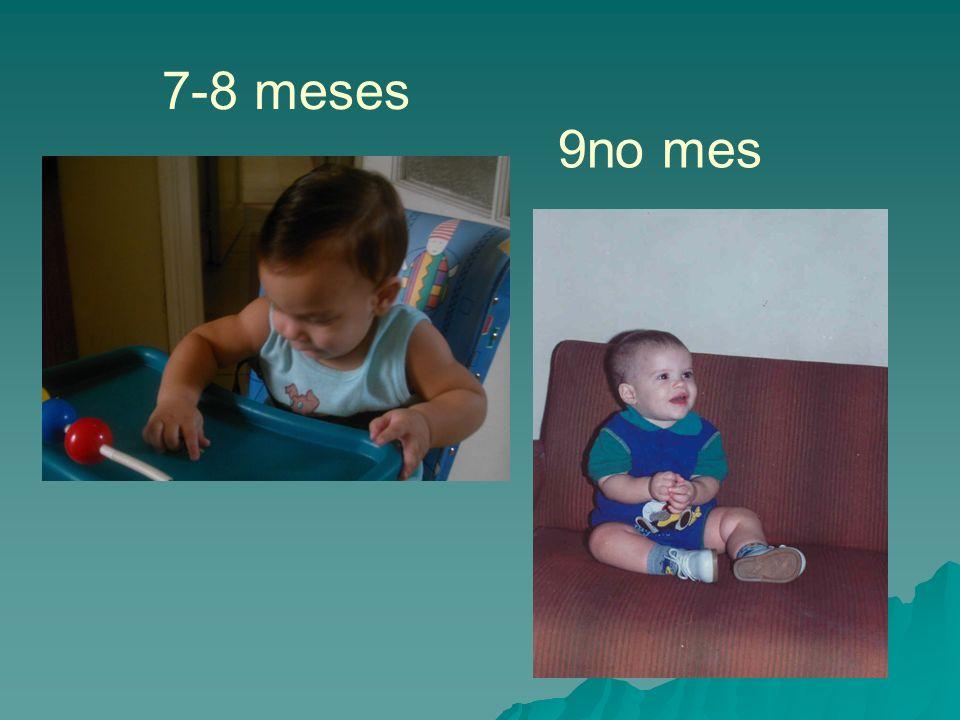7-8 meses 9no mes