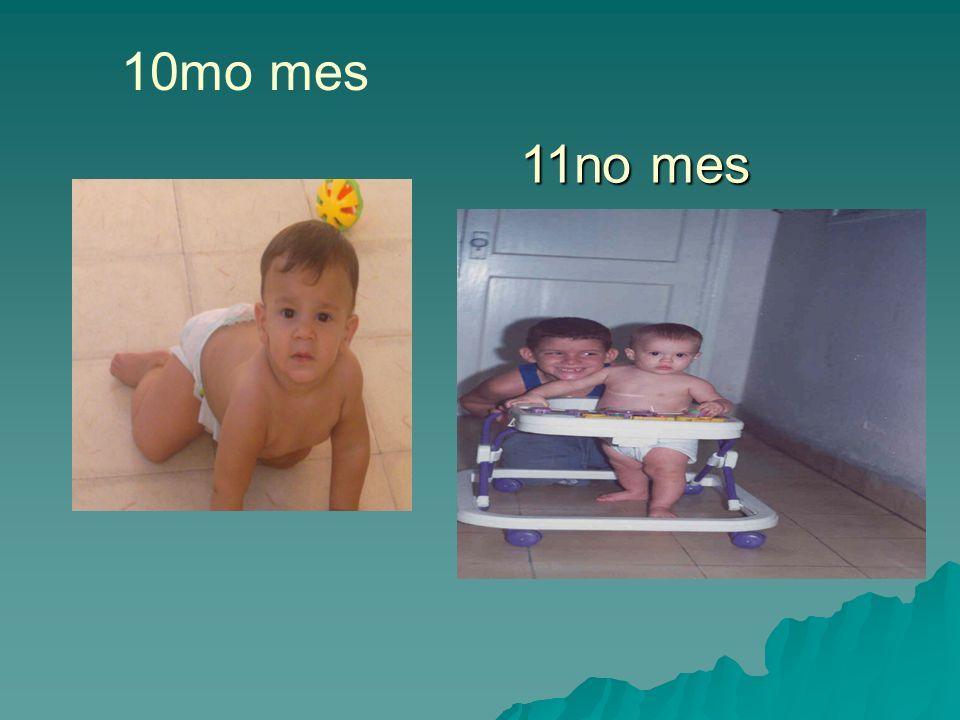10mo mes 11no mes