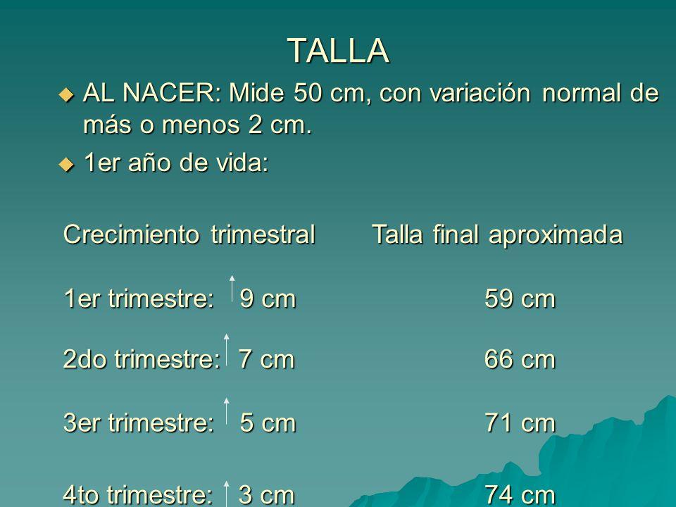 TALLA AL NACER: Mide 50 cm, con variación normal de más o menos 2 cm. AL NACER: Mide 50 cm, con variación normal de más o menos 2 cm. 1er año de vida: