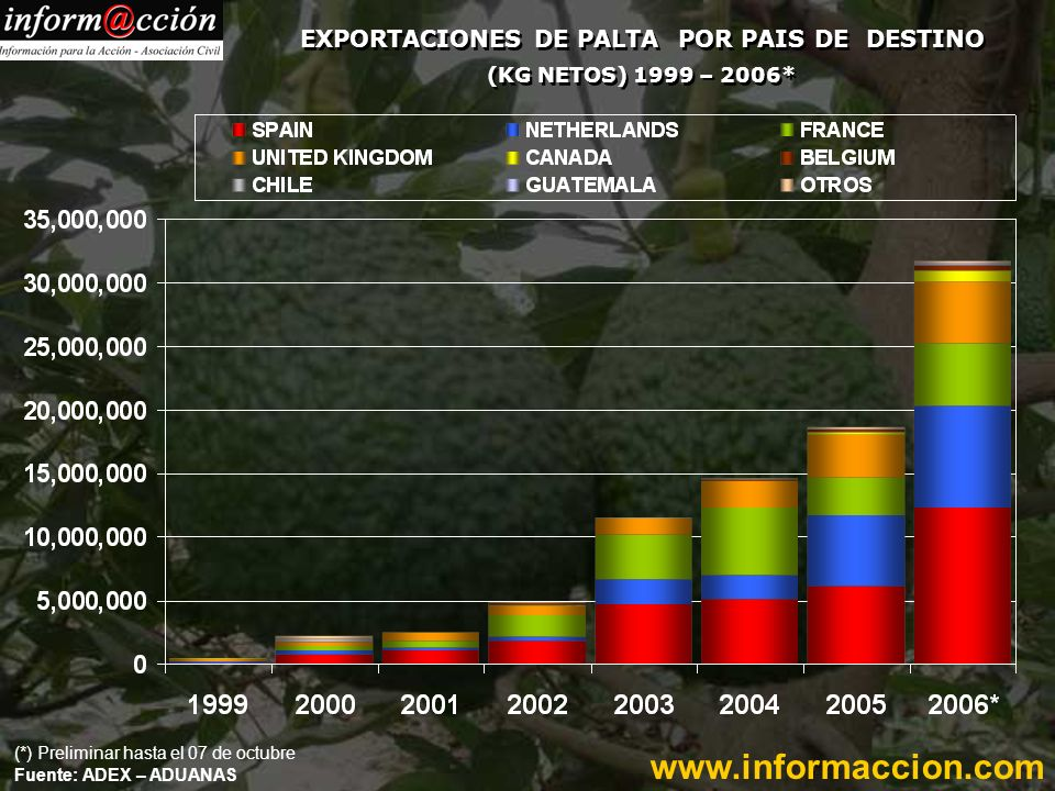 EXPORTACIONES DE PALTA POR PAIS DE DESTINO (KG NETOS) 1999 – 2006* (*) Preliminar hasta el 07 de octubre Fuente: ADEX – ADUANAS www.informaccion.com