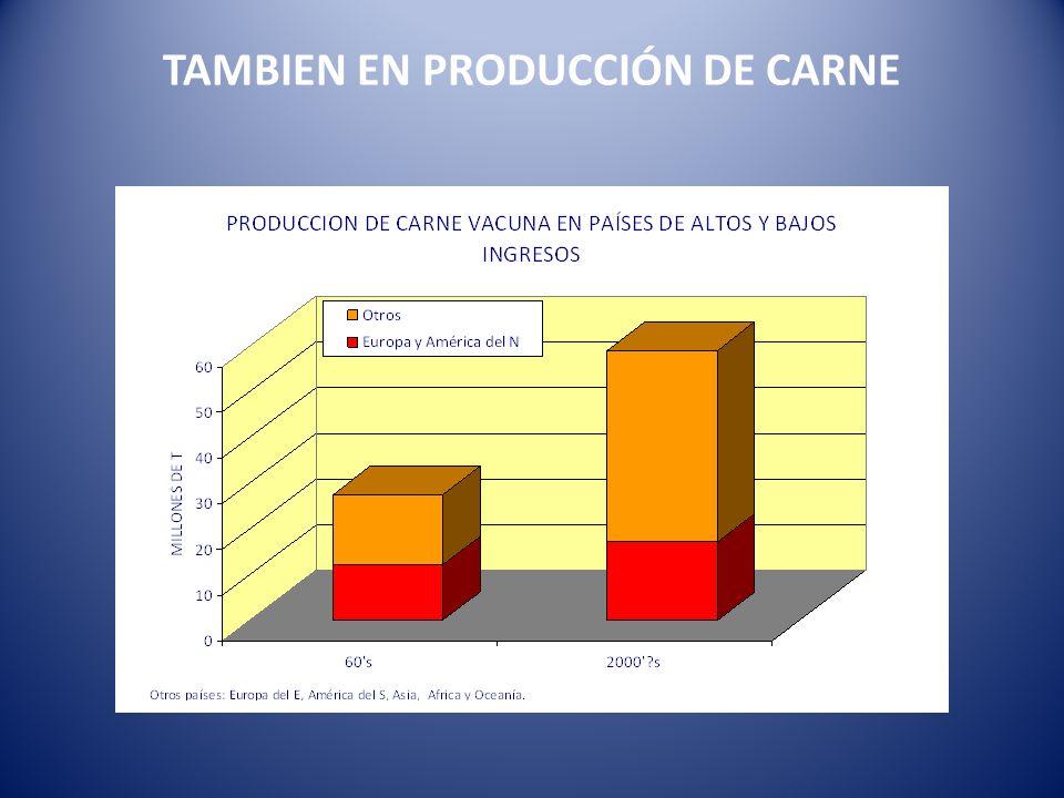TAMBIEN EN PRODUCCIÓN DE CARNE