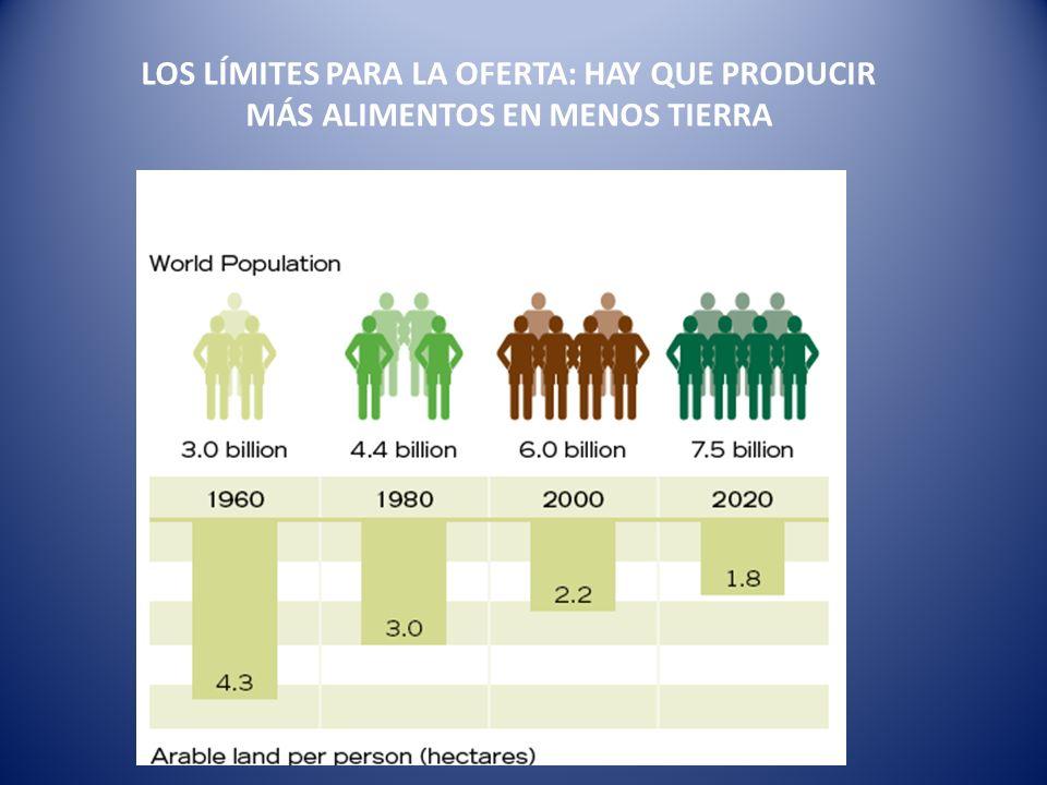 LOS LÍMITES PARA LA OFERTA: HAY QUE PRODUCIR MÁS ALIMENTOS EN MENOS TIERRA