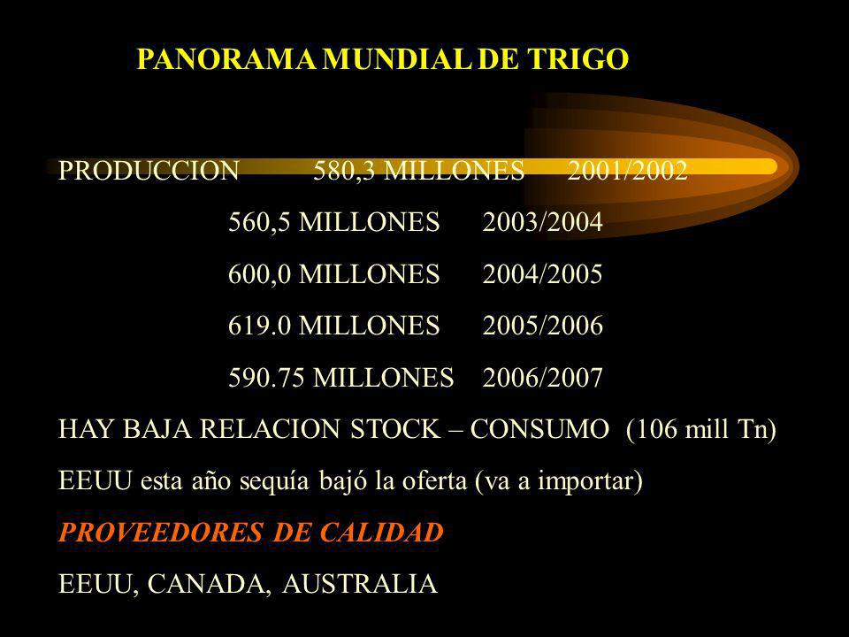 PANORAMA MUNDIAL DE TRIGO PRODUCCION580,3 MILLONES2001/2002 560,5 MILLONES2003/2004 600,0 MILLONES2004/2005 619.0 MILLONES2005/2006 590.75 MILLONES200