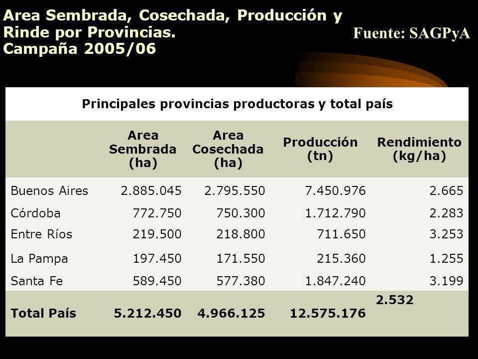 Area Sembrada, Cosechada, Producción y Rinde por Provincias. Campaña 2005/06 Principales provincias productoras y total país Area Sembrada (ha) Area C